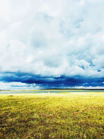 Perfect weather right before the storm Visitestonia Travel Destinations EyeEm Best Shots Sky Storm Storm Cloud Cloud - Sky Sky Beauty In Nature Land Tranquil Scene Field Scenics - Nature Landscape Nature Day