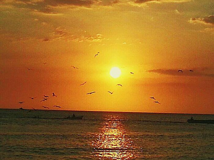 Fisherman Sunset Ocean Vibes Boats Saltlife Peacefull 420
