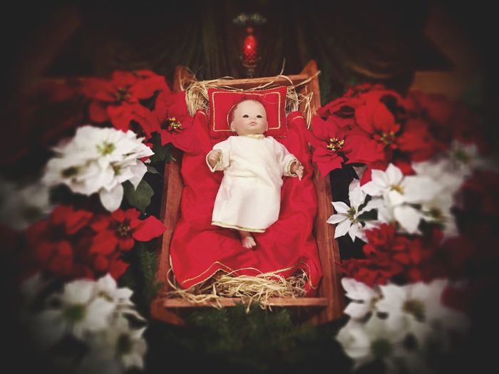 Christmas Red Christmas Indoors  Flower Christmas Time Christianity Baby Jesus Was Born Baby Jesus Jesus Christ Jesus Jesuschrist Statue