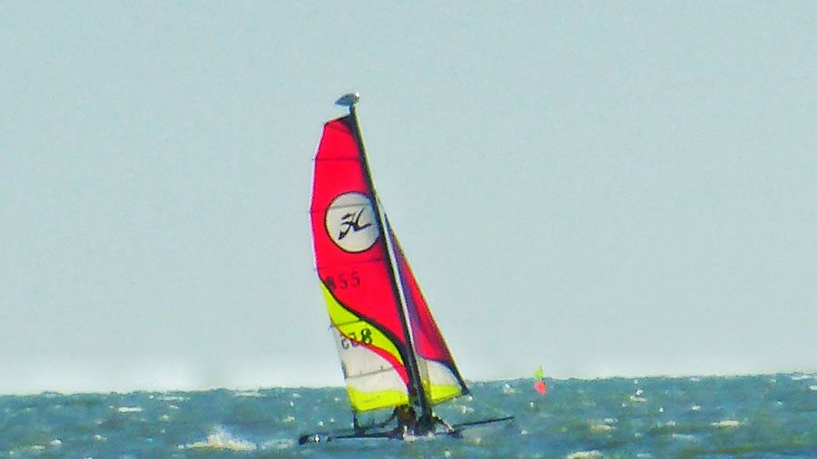 Windsurfing Catamaran Ships⚓️⛵️🚢 Sea Water Flag Red Outdoors Horizon Over Water Sailing Boat Sailor Nature Sky Waves Loire-atlantique Bretagne France🇫🇷 Travel Destinations Vacations Beauty In Nature Scenics Sports Photography
