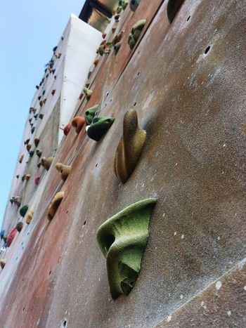 Rock climbing wall Workout Close-up Sport Equipment Exercise Equipment Exercise Healthy Rock Climbing Rock Climbing Wall Climbing Wall Sport Leisure Activity Recreation  Day Low Angle View Outdoors Extreme Sports Adventure Climbing Close-up No People EyeEmNewHere