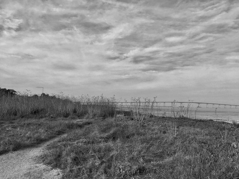 San Mateo Bridge Art Is Everywhere Blackandwhite Blackandwhite Photography IPhoneography Sky Field Tranquility No People Nature Grass Tranquil Scene Day Landscape Outdoors Scenics Cloud - Sky Beauty In Nature Growth