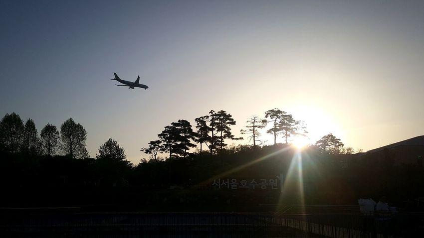 Flying Airplane Silhouette Mid-air Sunbeam Sky