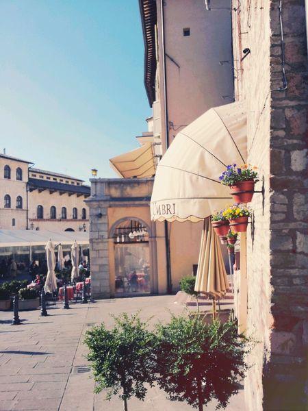 Assisi Beautiful Cafe Photography