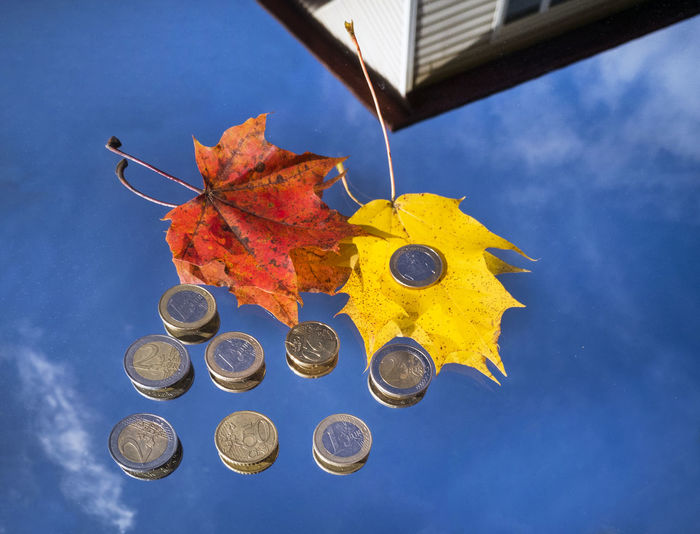 Close-Up Of Autumn Leaves And Coins On Mirror