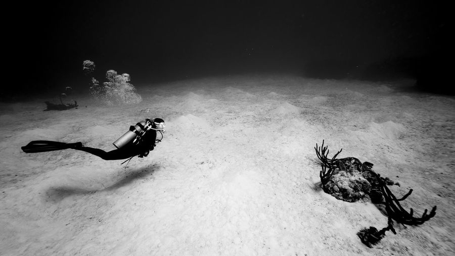 Scuba diver swimming undersea