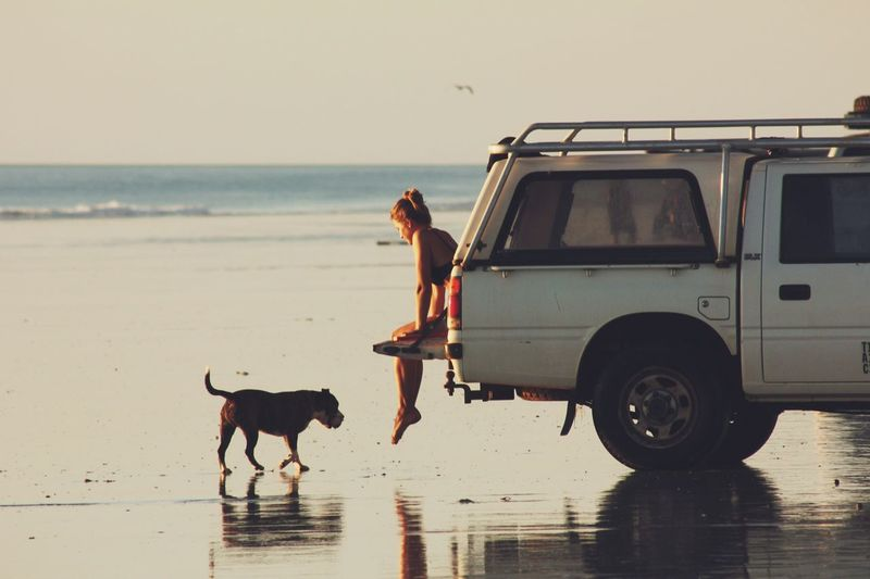 Loyal. Dog Pets Sea Beach One Animal Animal Themes Domestic Animals Water Sand Mammal Leisure Activity Real People Full Length Nature One Person Horizon Over Water Outdoors Sky Lifestyles Standing Sunset Girl Car Mix Yourself A Good Time Pet Portraits Pet Portraits