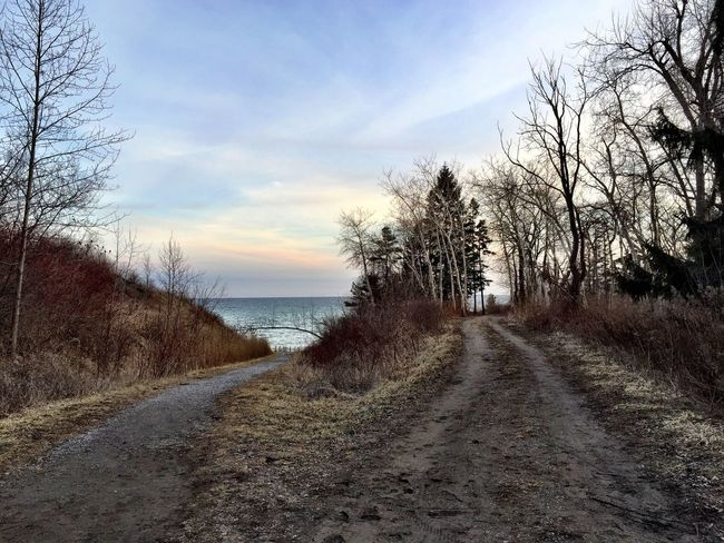 Two roads diverged in the woods...I took the one to the beach 😊 Lake Ontario Waterfront Trail East Point IPhoneography