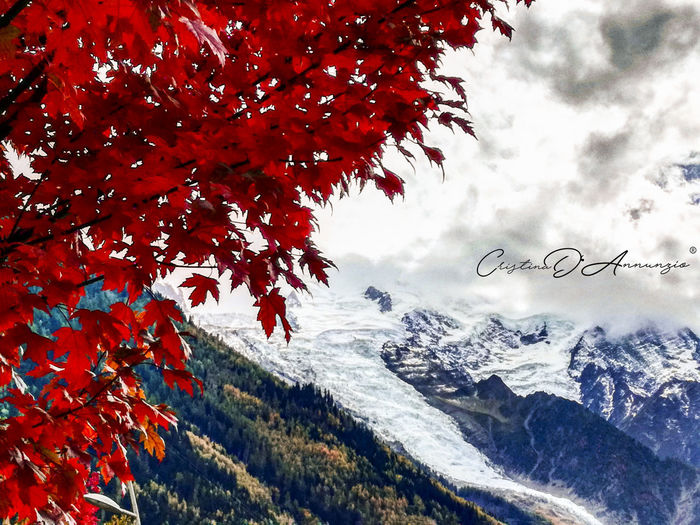 Scenic view of snow covered mountains against sky during autumn