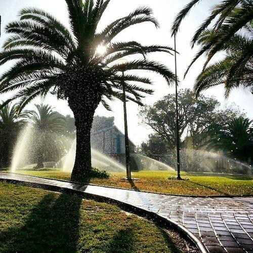 Good morning, Sun :) Ashkelon - 2013. Good Morning Sun Sunrise Ashkelon