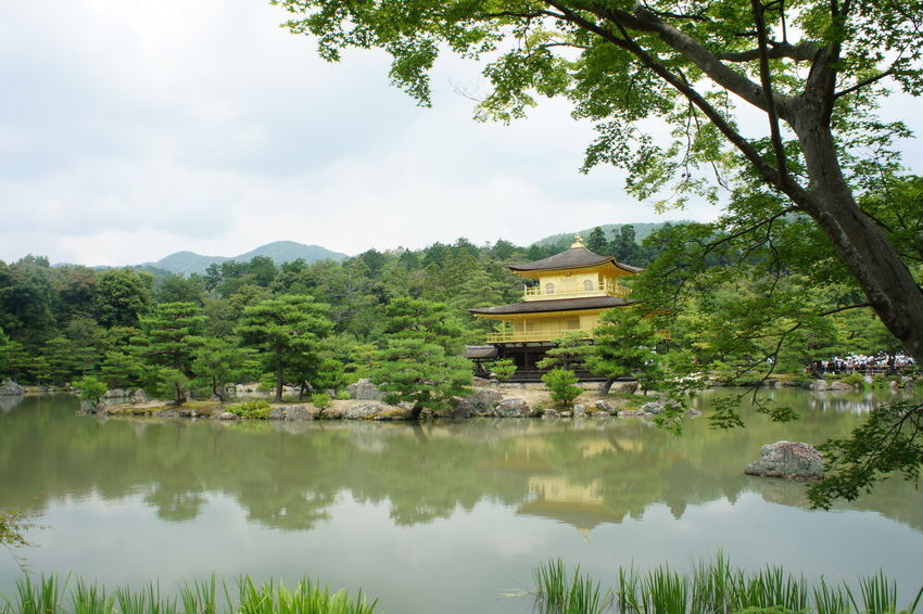 Calm Golden Pavilion  Japan Japan Photography Japan Scenery Japanese  Japanese Culture Japanese Garden Japanese Style Outdoors Reflection Relaxing Moments Tranquil Scene
