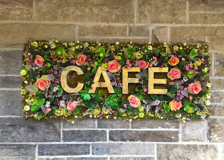 Cafe Text Flower Flowering Plant Plant Architecture Built Structure Brick Close-up Nature Outdoors Cafe Gastronomy Sign Shield Colorful Drink Restaurant Coffee Happy Cheerful Backgrounds Word First Eyeem Photo