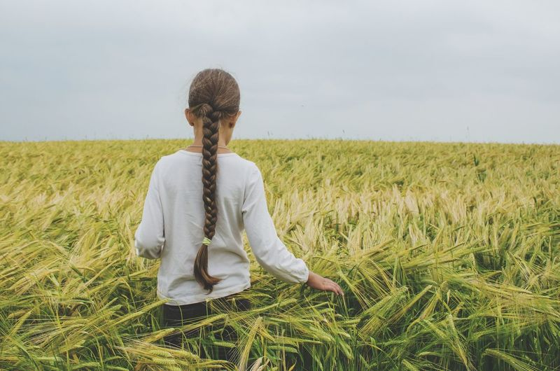 Rear view of girl with long braided hair standing amidst crops on agricultural field