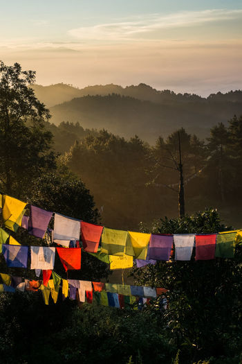 High angle view of prayer flags against trees and mountain