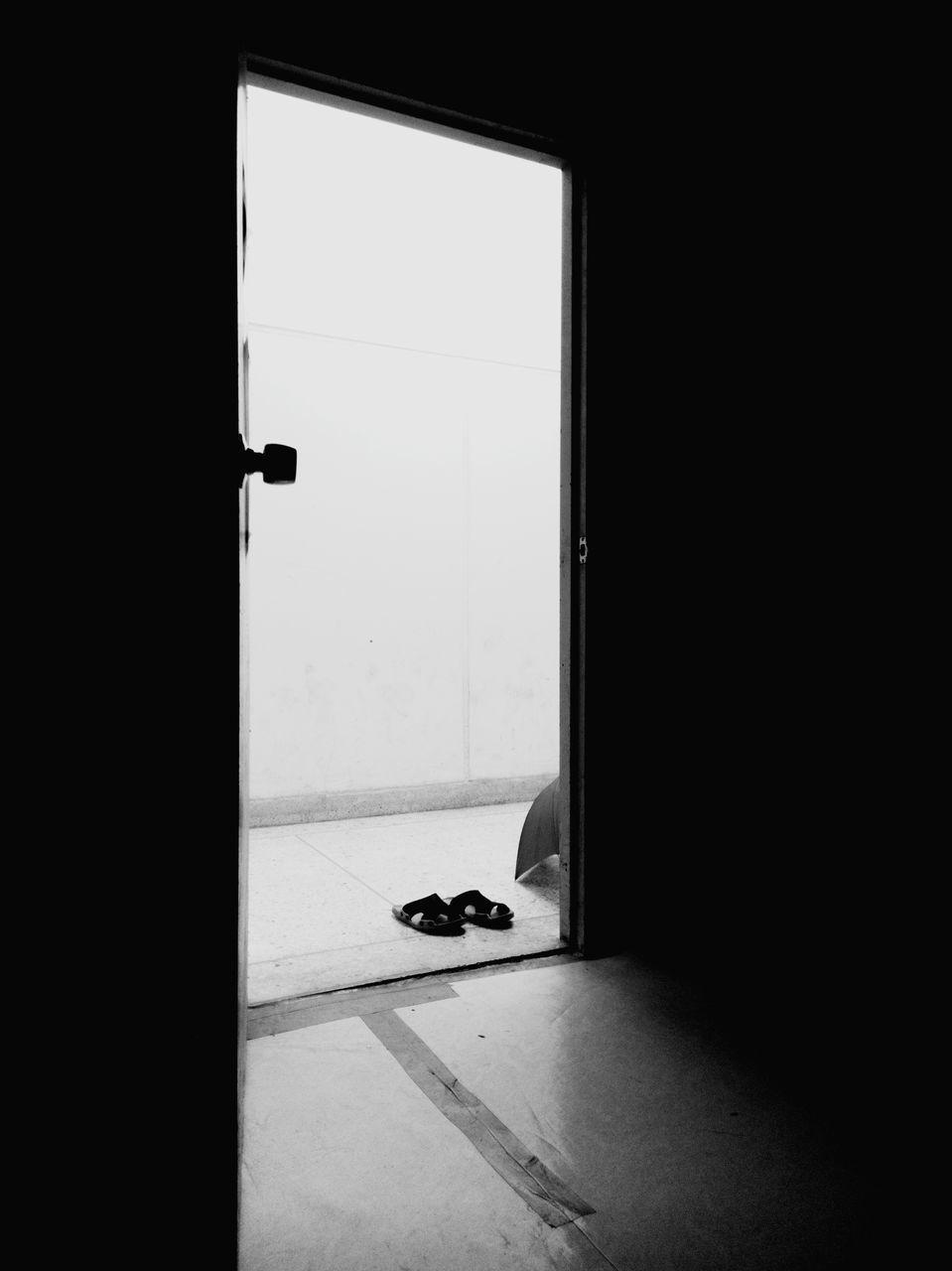 VIEW OF AN ANIMAL SEEN THROUGH OPEN WINDOW