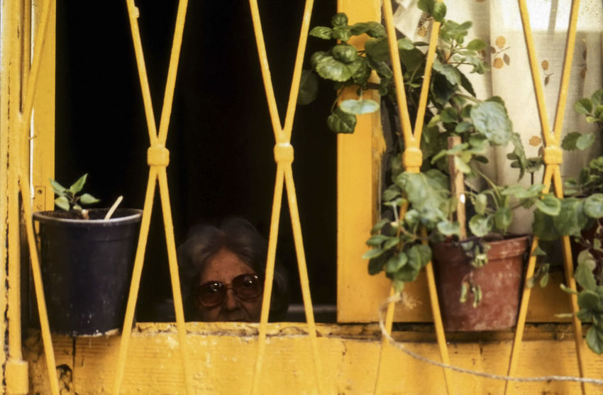 The Face at the Window An old lady looking out of her window, Corfu Old Town, Greece Alone Greece Photos Greek Travel Photography Aged Corfu Old Town Elderly Woman Indoors  Ionian Islands Mature Adult One Person People Senior Women Window