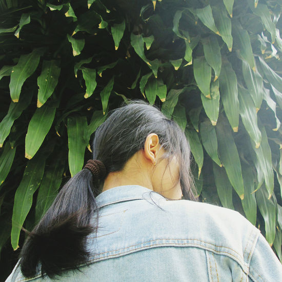 Rear view of woman standing against tree