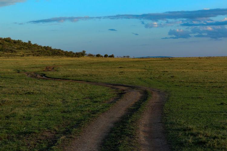 Road leading towards grassy field