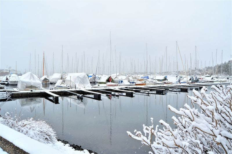 Water Mode Of Transportation Transportation Cold Temperature Nautical Vessel Winter Snow Day No People Nature Moored Frozen Harbor Sailboat Waterfront Reflection Outdoors Ice Yacht Marina