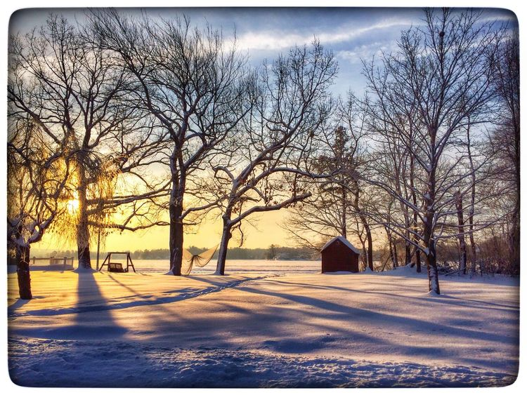 Snow First Snow Lake Lake View Light And Shadow Cold Days Sunset Sunrise EyeEm Best Shots TTrees