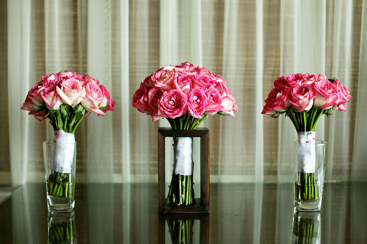 Close-up of pink roses in vase