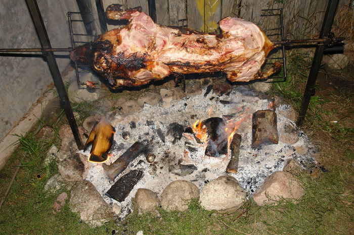 Barbecue! Barbecue Barbecued Pork Day Feast Garden Grill No People Outdoors Party Pig Poland Polska Pork Summer Vietnamese Pig