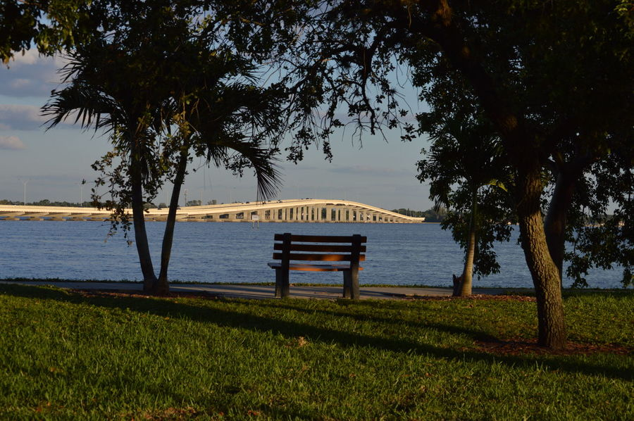 Tree Water Nature Tranquility Beach No People Vacations Travel Destinations Scenics Day Grass Sea Beauty In Nature Outdoors Sky Bridge Bridge - Man Made Structure River View River Riverside Cape Coral Fort Myers Florida Lee County, Florida