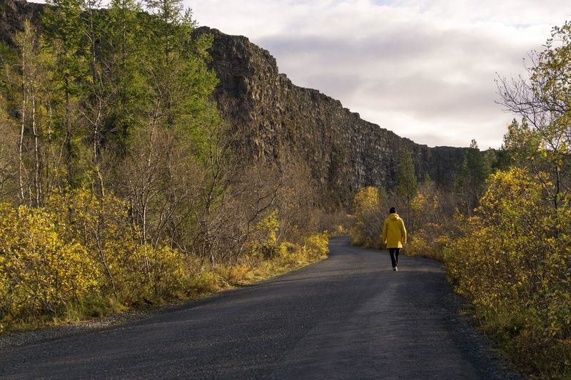 Lost In The Landscape Rear View Road Walking Full Length One Person The Way Forward Nature Real People Leisure Activity Beauty In Nature Outdoors Lifestyles Day Iceland Beauty In Nature Travel Nature Autumn Tree Yellow Sky Landscape Lost In The Landscape