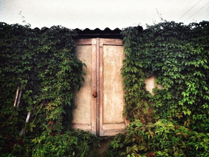 Dreamfates Nature Doors Homeland
