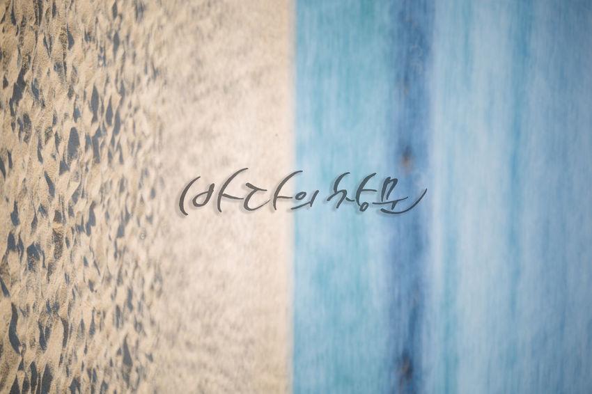 바다 Korea KangReung Sea Beach Water Communication Text Close-up Message Note Announcement Message Written