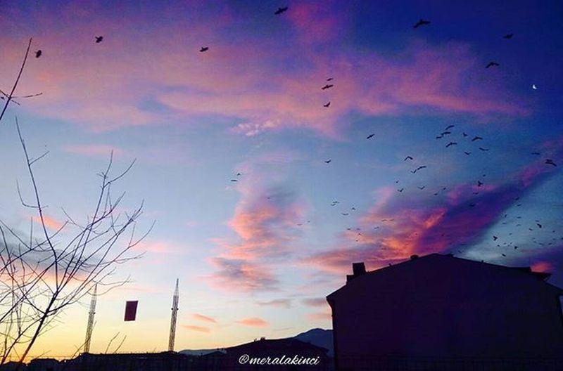 Ben şimdi bu gökyüzünü nasıl sevmeyeyim 😍😍😍 . .. Güzelbirgüne Günaydın Gokyuzune Aşık Birben Gokyuzu Bukadar Guzelken Sevilmezmi Skyline Skylovers Skyphotography Gundogumu Sunshine Cloudslovers Cloudsphoto Photograph Photolovers Photographer Photogram Photooftheday Instagram Likesphoto Instalike Vscom vsphoto vsturkey goodmorning
