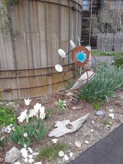 photo by Alicia Spears Rocks White Blue Drift Wood  Garden Dream Art Silo Flowers Barn EyeEmNewHere Abandoned Architecture Growing Stem Bud Young Plant Stalk