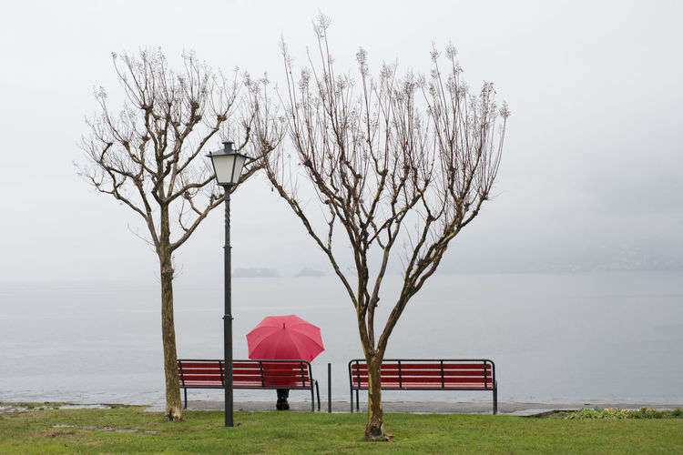 Woman sitting on bench with red umbrella amidst bare trees at lakeshore in foggy weather
