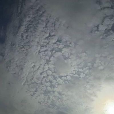 おはようございます。 空 Sky イマソラ ダレカニミセタイソラ Team_jp_ Japan Instagood 景色 Scenery 自然 Nature Icu_japan Ig_japan Ig_nihon Jp_gallery Japan_focus