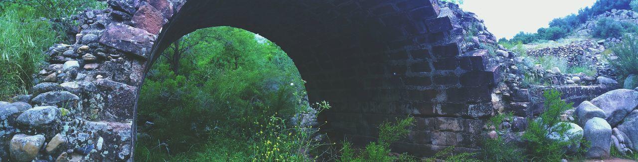 El Piélago Linares Jaen Province Andalucía Nature Andalucía Puente Puentes Puente Romano Patrimônio Histórico Patrimonio Cultural Patrimonio Monumentos  Monumento Natural monumento natural de El Piélago