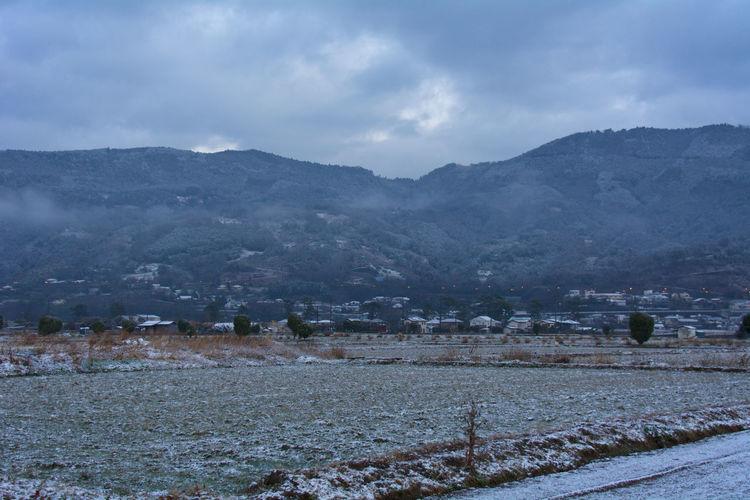夜のうちに雪が降ったようでうっすら積もっていました。この冬初の雪景色です。 Clouds And Sky Mornig Mountains Nikon Nikon D7100 Snap Snow