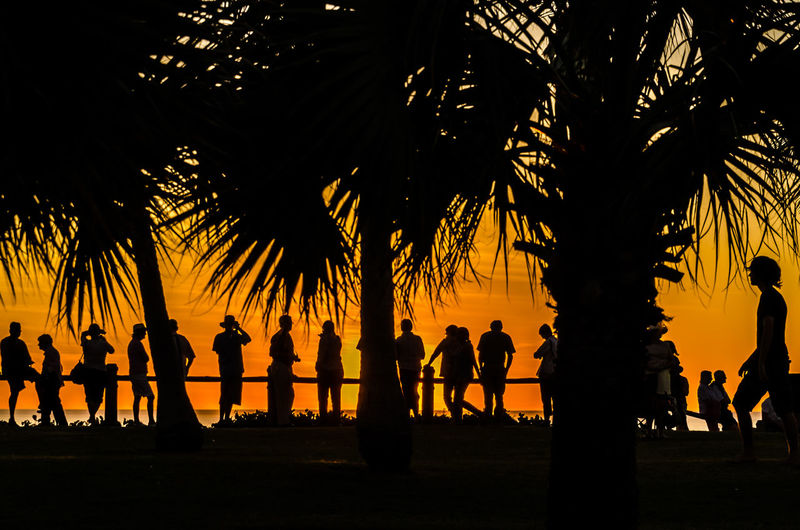 Australia Beach Beauty In Nature Day Full Length Growth Large Group Of People Nature Outdoors Palm Tree Real People Scenics Silhouette Silhouette Sky Sunset The Great Outdoors - 2017 EyeEm Awards Tree Tree Trunk Watching The Sunset Western Australia in Broome, Australia Live For The Story Sommergefühle Breathing Space