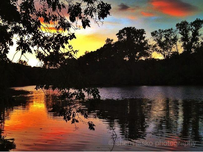 Sunset EyeEm Best Shots EyeEm Nature Lover Water_collection