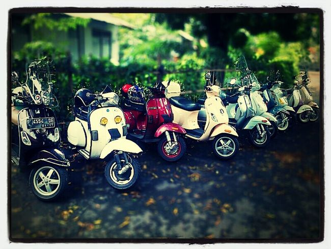 Sunday morning at Agri park Bogor Bopscoot Vespa
