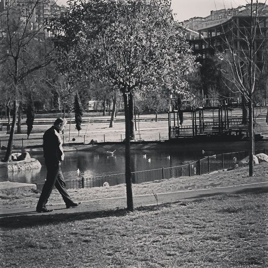 Gitmekle gidilmiyor ki. Gitmekle gitmiş olmazsın; Gönlün kalır, aklın kalır, anıların kalır. Cemal Süreya. Gitmek Ayrılık Aşk Cemalsüraya Istanbul #turkiye Istanbuldayasam Istanbul Yürüyoruz Hayat Hasbahçe