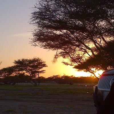 بتصويري بعدستي غروب غروب_الشمس طبيعة جمال هاشتاق_صور غرد_بصوره عدسة عدسه عدستي فوتوغرافيه فولو كاميرا كانون كام مساء_الخير نيكون تصويري ابداعي الناس_الرائيه المصورون_العرب لقتطي لقطة السعودية