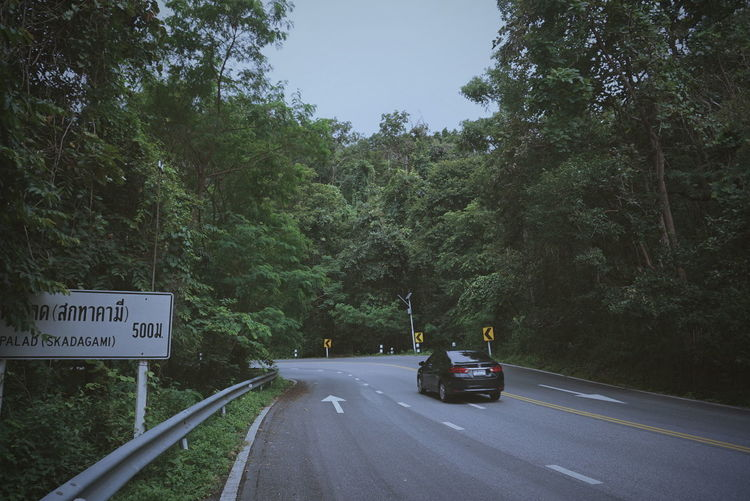 Lonely road.
