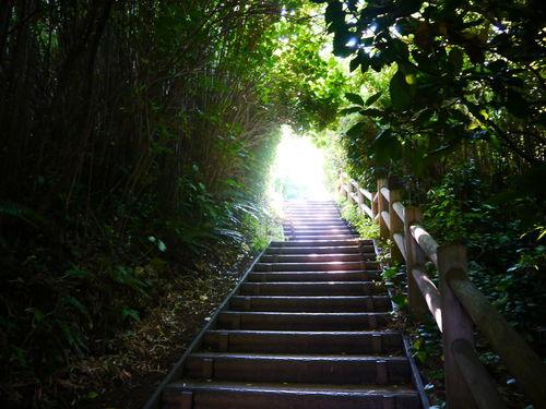 Japan Memorial Tokyo Bay Yokosuka Fortress Island Sarushima Ww2