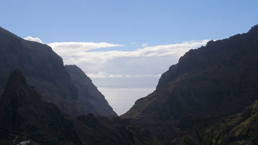 The Atlantic from Tenerife. SPAIN España Tenerife Canary Islands Islas Canarias Atlantic Ocean Atlantic Clouds Sea Mountain Mountains Peak Nature Great View Mountain Cliff Tree Rock - Object Sky