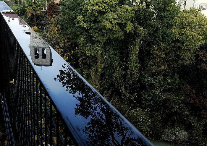 Riflessi a Cividale No People Tree Water Sky Beauty In Nature Day Natisone Italia Green Color Friuli Venezia Giulia Cividale Del Friuli