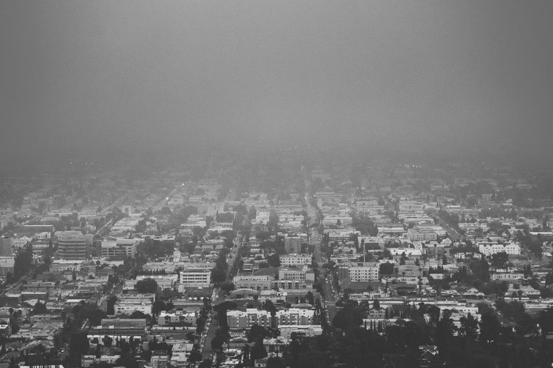 Looking out on Los Angeles from Griffith Observatory in Black and White Architecture Building Exterior Built Structure City City Life Cityscape Crowded Day Modern Outdoors People Residential Building Sky Skyscraper Travel Destinations Urban Skyline