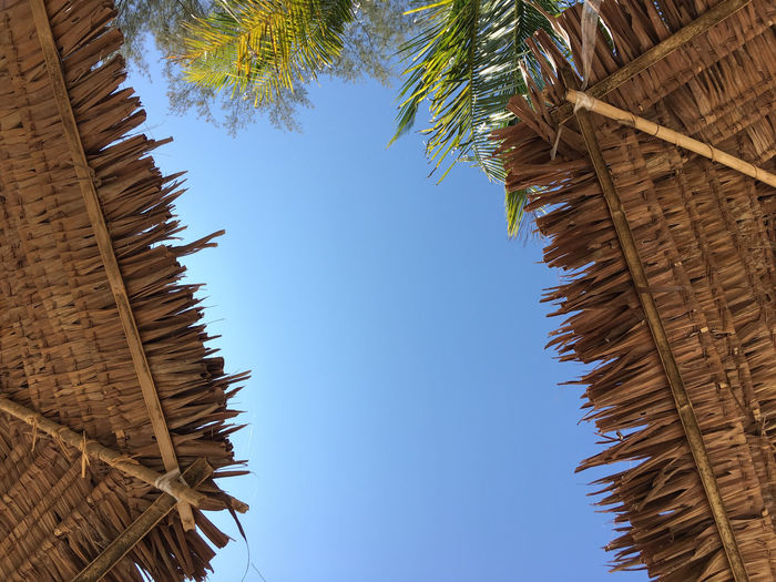 Low Angle View Of Beach Umbrellas Against Sky