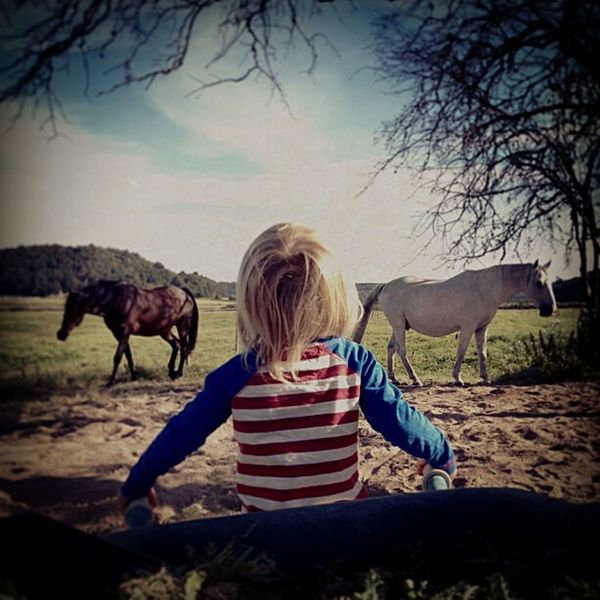 My best friend Maria live in the countryside outside of Gothenburgh. this is her son in Fjärås Love Life ❤IPhoneography Iphonephotography Boy Horses Ilovehorses Eye4photography  Holiday POV Enjoying Life Naturelovers Little Boy Horses Man And Horse
