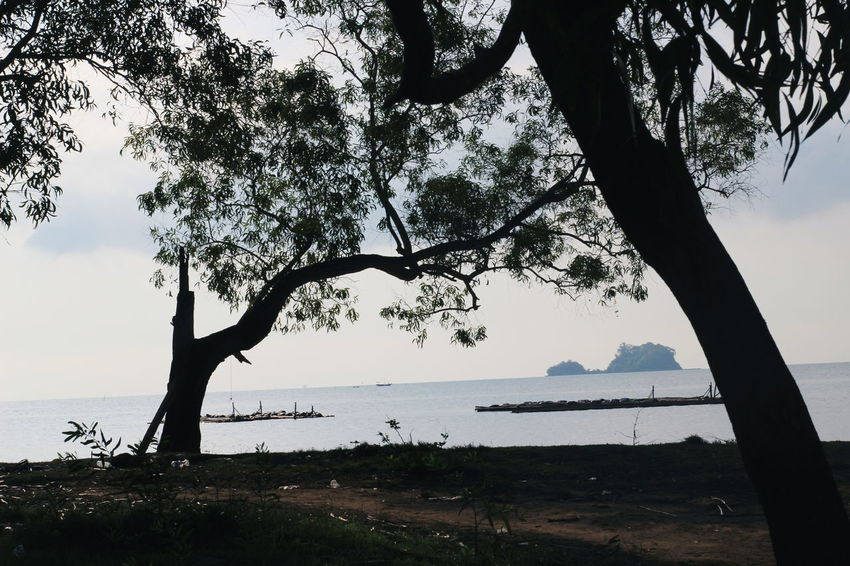 Tree Nature Beauty In Nature Water Silhouette Outdoors Landscape No People Sea Beach Blue Vacations Adventure EyeEm Photo Of The Day Eyeem Photo Of The Week Horizon Over Water The Week On EyeEm Beauty In Nature INDONESIA