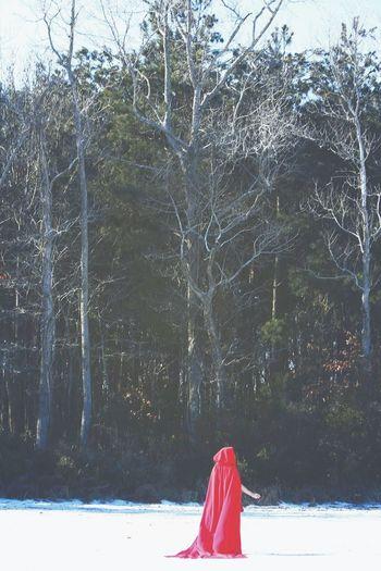 Little Red Riding Hood Dark Woods Forest Snow Striking Fashion